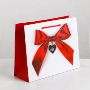 """Подарочный пакет """"Счастье мое"""" ламинированный 18х23х8 см"""
